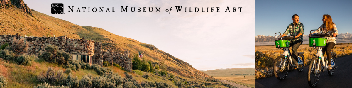 Museum Email & Web Banner